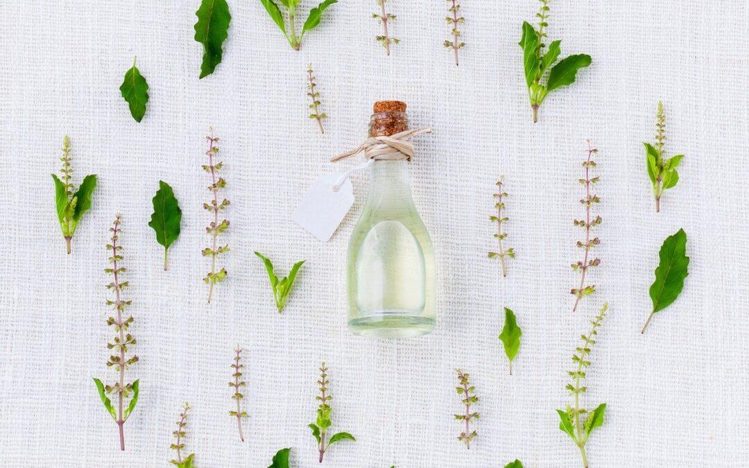 Hierbas Medicinales para Limpiar el Útero